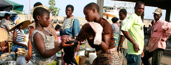Buying and selling on a wet market in Africa
