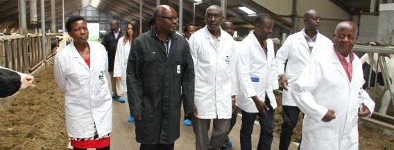 Ugandan farmers inspect milking robots