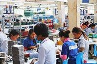 Cambodja Pactics business case thumb