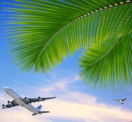 Vliegtuig in tropische lucht