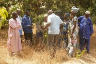 Tanzanians in front of mango tree