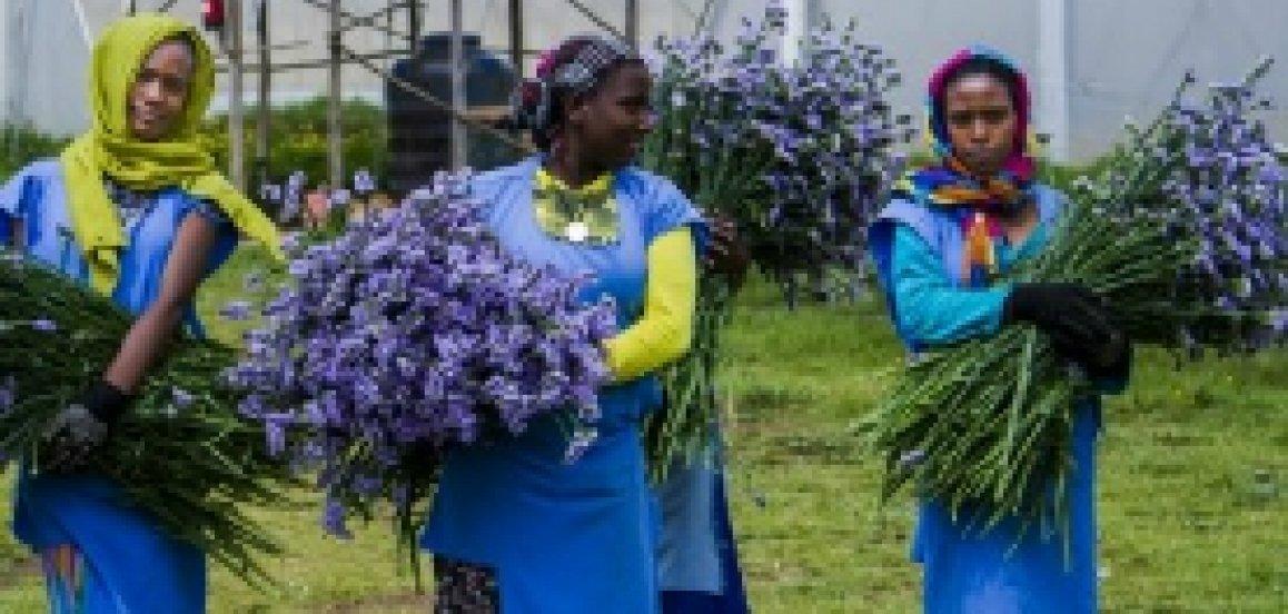 Women carrying flowers