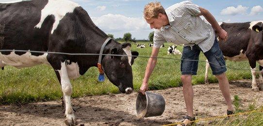 Agrarian enterprise